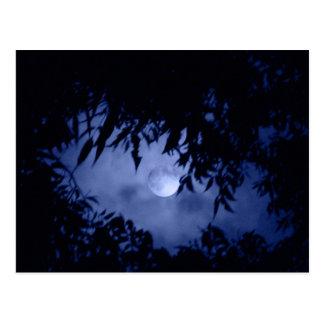 Moonglow Briefkaart