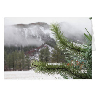 Morn van de koude Winter Briefkaarten 0