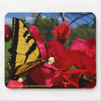 Mousepad - het zuigen Butterlfly op een bloem Muismat