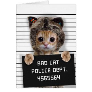 mugshot kat - gekke kat - katachtig kat - kaart