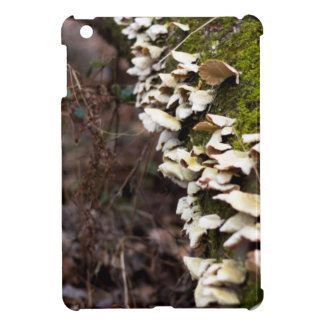 mushroom_downed tree_moss_winter iPad mini cover