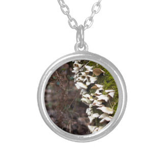mushroom_downed tree_moss_winter zilver vergulden ketting