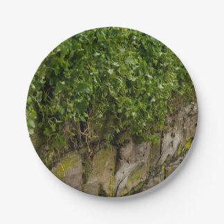 Muur van Klimop Papieren Bordjes