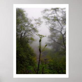 Mystieke Ochtend bij Appalachian Sleep Poster