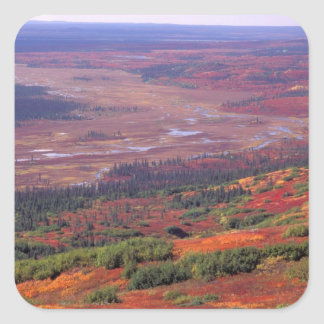 Na, de V.S., Alaska, Denali NP, Uitzicht van Vierkante Sticker