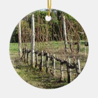 Naakt wijngaardgebied in de winter. Toscanië, Rond Keramisch Ornament