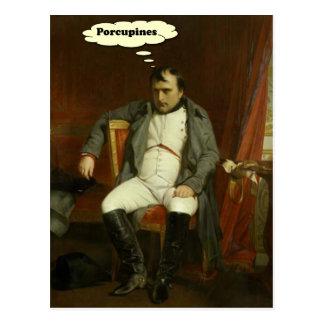 Napoleon denkt over Stekelvarkens Briefkaart