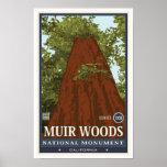Nationaal Monument 3 van het Bos van Muir