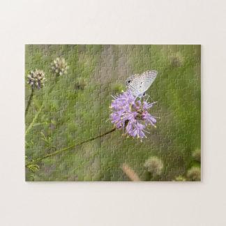 Nectar van de Vlinder van Ceraunus de Blauwe op Puzzel