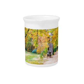 Nederlands de herfstlandschap met voetpad en boom drank pitcher