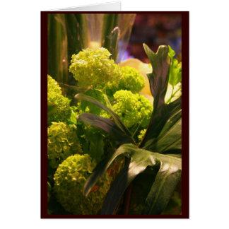 Nederlandse bloemen briefkaarten 0