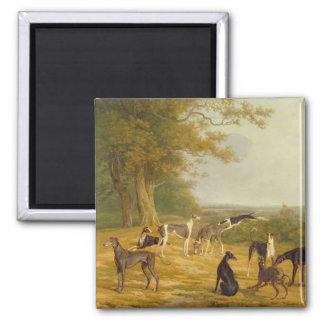 Negen Windhonden in een Landschap (olie op canvas) Magneten