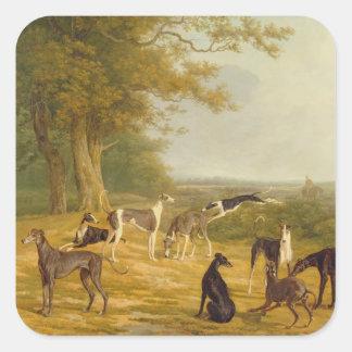 Negen Windhonden in een Landschap (olie op canvas) Vierkante Sticker