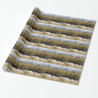 Nevelige ochtendbezinningen, Tasmanige, Australië Inpakpapier