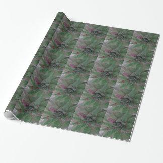 Nevelige Succulente, Groene Paars, Natuur, het Inpakpapier