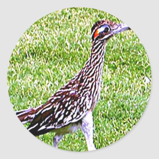 New Mexico Roadrunner Ronde Sticker