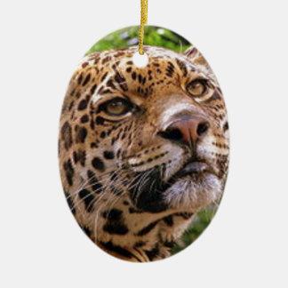 Nieuwsgierig Jaguar Keramisch Ovaal Ornament