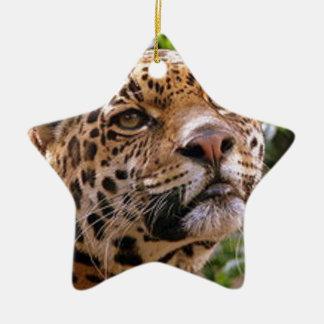 Nieuwsgierig Jaguar Keramisch Ster Ornament