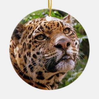 Nieuwsgierig Jaguar Rond Keramisch Ornament