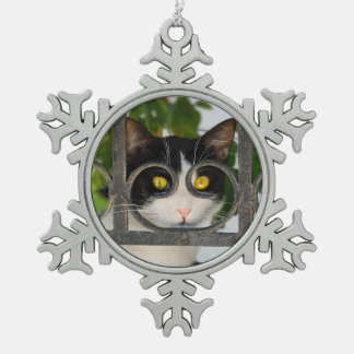 Nieuwsgierige Kat met het Lijst van de Bril - het Tin Sneeuwvlok Ornament