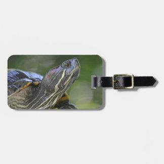 Nieuwsgierige Schildpad Kofferlabels