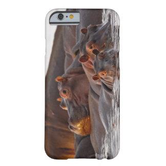 Nijlpaard, amphibius van het Nijlpaard, Meer Barely There iPhone 6 Hoesje