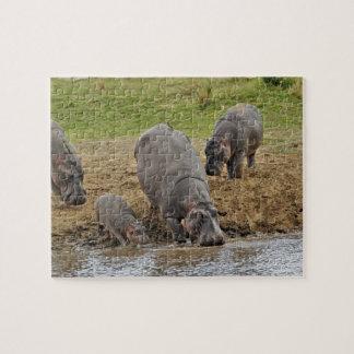 Nijlpaard, amphibius van het Nijlpaard, Serengeti Puzzel