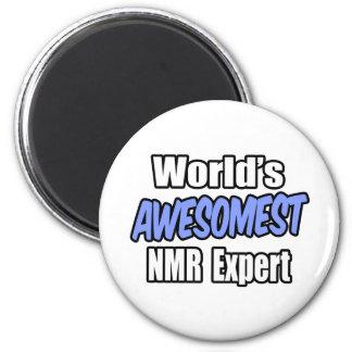 NMR Deskundige van Awesomest van de wereld Koelkast Magneetjes