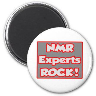 NMR Deskundigen schommelen! Koelkast Magneetjes