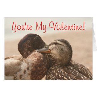 Nog Grappige eenden Mijn Valentijnse Kaart