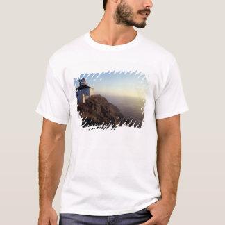 Noord-Amerika, Canada, Newfoundland, Spear van de T Shirt