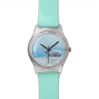 Noordpool arcticus hazen, lepus, of polair konijn horloge