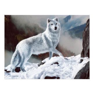 Noordpool Wolf Foto Kunst