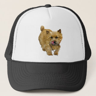 Norwich Terrier Trucker Pet