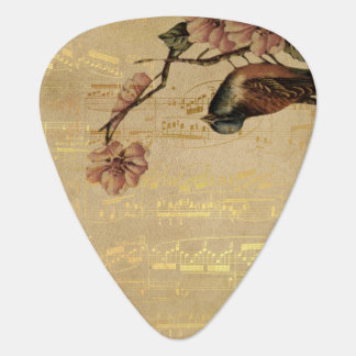 Nota's van de Muziek van de vintage van het Lied Plectrum
