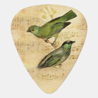 Nota's van de Muziek van de vintage Vogel van het Plectrum