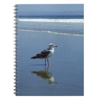 Notitieboekje/Persoonlijk Dagboek - zeemeeuw op Ringband Notitieboeken