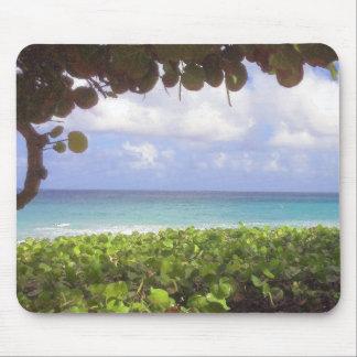 Oceaan Uitzicht, Strand Juno Muismat