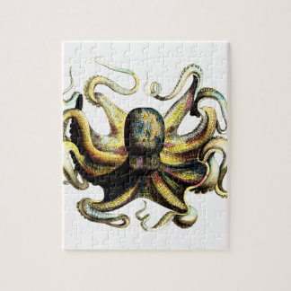 Octopus Puzzels