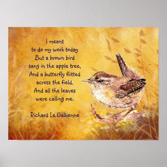 Gedicht Verjaardag Vogel Archidev