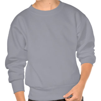 Ohm Products Pull Over Sweatshirts