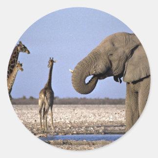 Olifant en giraf bij bar ronde sticker