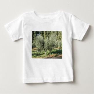 Olijfbomen in een zonnige dag. Toscanië, Italië Baby T Shirts