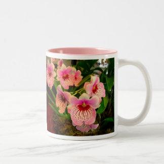 Olivia Mug Tweekleurige Koffiemok