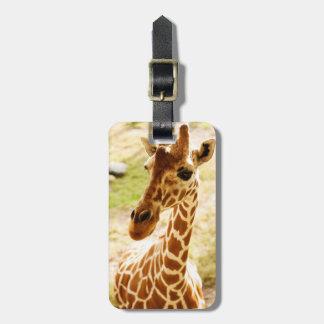 Omhoog Dichte giraf Kofferlabels