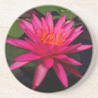 Onderzetter - roze waterlelie