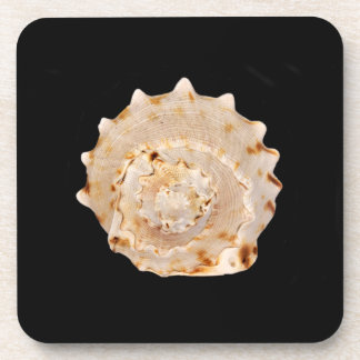 Onderzetters van Shell van de kroonslak de Harde