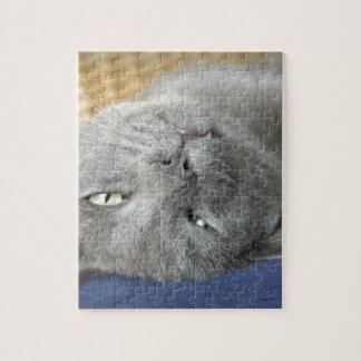Ontspan! De grijze Spinnende Puzzel van de Kat Legpuzzel