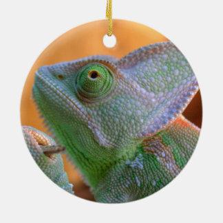 Ontspannen Versluierd Kameleon Rond Keramisch Ornament