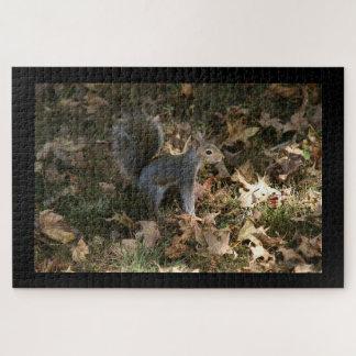 Oostelijke Grijze Eekhoorn, het Raadsel van de Legpuzzel